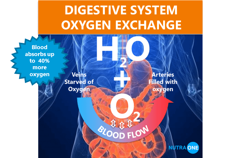 Digestive system oxygen exchange with Nutra One